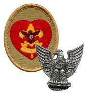 Life Scout patch and Eagle Scout pin